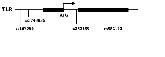 https://static-content.springer.com/image/art%3A10.1186%2F1475-2875-11-168/MediaObjects/12936_2011_Article_2153_Fig1_HTML.jpg