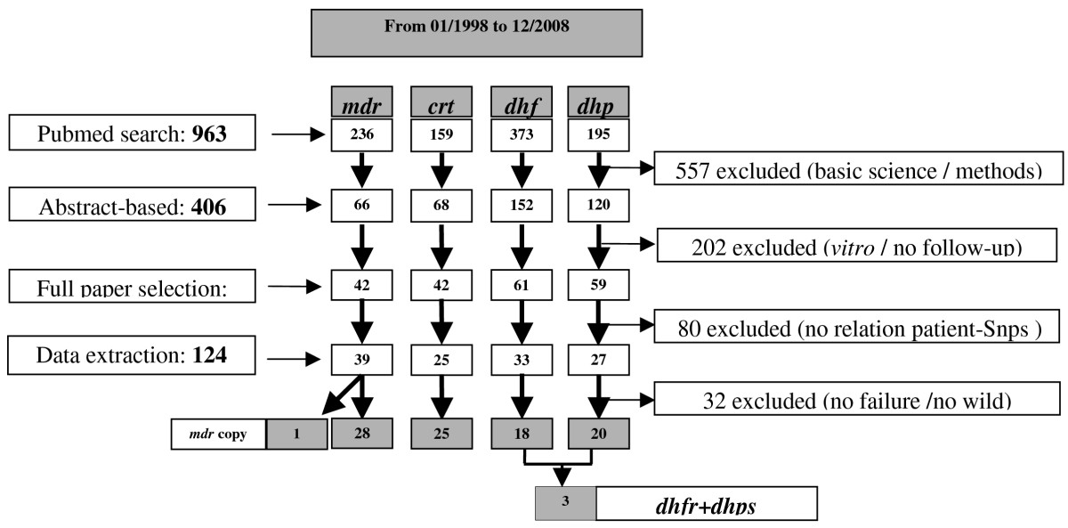https://static-content.springer.com/image/art%3A10.1186%2F1475-2875-8-89/MediaObjects/12936_2008_Article_838_Fig1_HTML.jpg