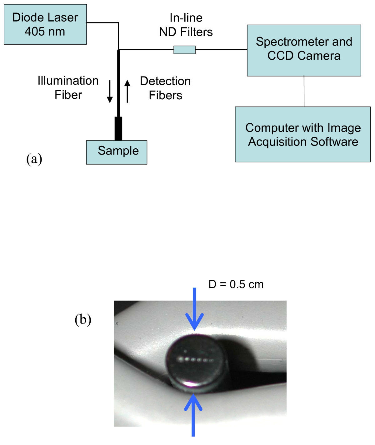 https://static-content.springer.com/image/art%3A10.1186%2F1475-925X-5-49/MediaObjects/12938_2006_Article_192_Fig1_HTML.jpg