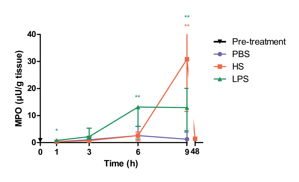 https://static-content.springer.com/image/art%3A10.1186%2F1476-9255-7-24/MediaObjects/12950_2009_Article_143_Fig4_HTML.jpg
