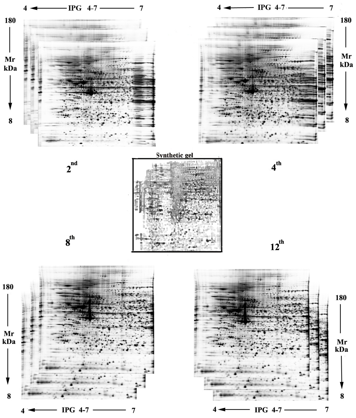 https://static-content.springer.com/image/art%3A10.1186%2F1477-5956-8-18/MediaObjects/12953_2009_Article_170_Fig3_HTML.jpg