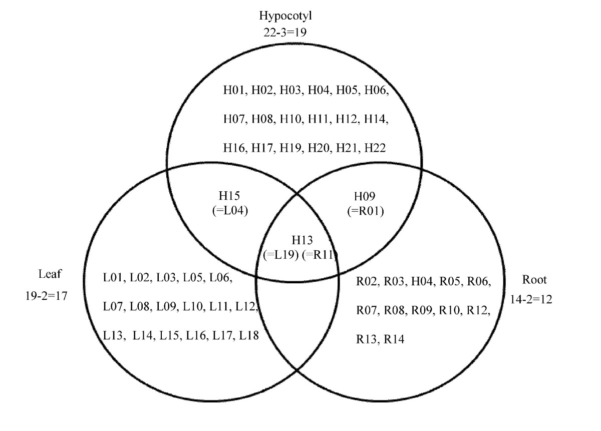 https://static-content.springer.com/image/art%3A10.1186%2F1477-5956-8-19/MediaObjects/12953_2009_Article_171_Fig6_HTML.jpg