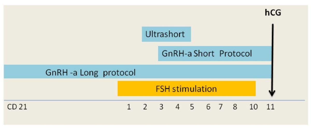https://static-content.springer.com/image/art%3A10.1186%2F1477-7827-10-26/MediaObjects/12958_2011_Article_977_Fig1_HTML.jpg
