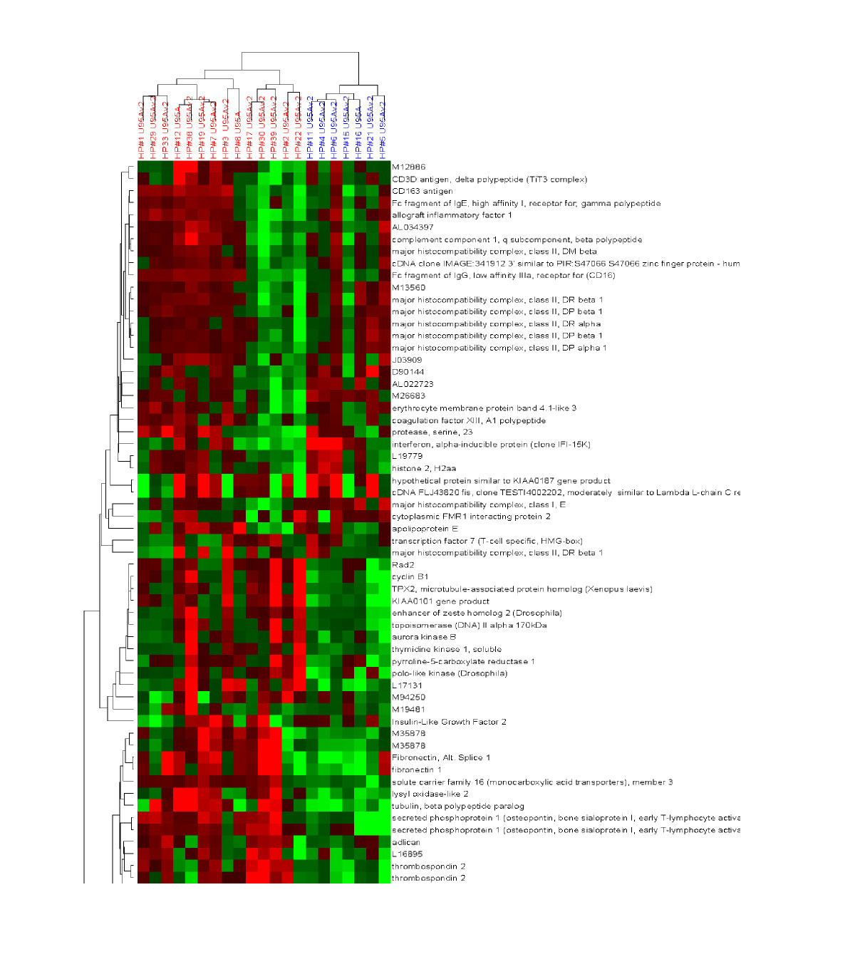 https://static-content.springer.com/image/art%3A10.1186%2F1479-5876-2-35/MediaObjects/12967_2004_Article_49_Fig6_HTML.jpg