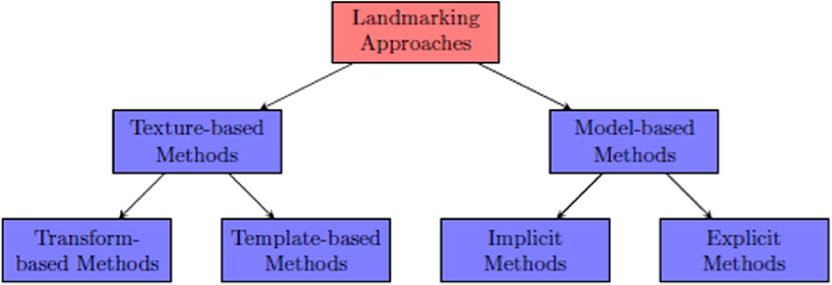 https://static-content.springer.com/image/art%3A10.1186%2F1687-5281-2013-13/MediaObjects/13640_2011_Article_372_Fig4_HTML.jpg