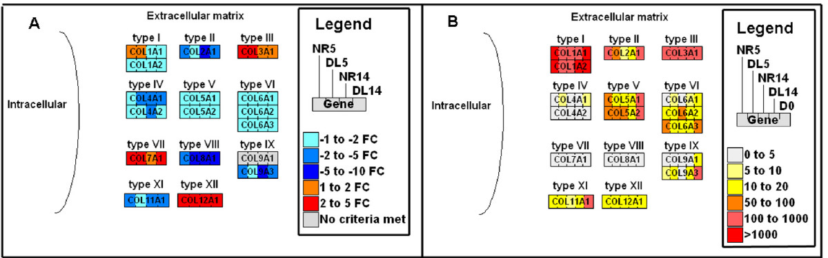 https://static-content.springer.com/image/art%3A10.1186%2F1741-7007-7-1/MediaObjects/12915_2008_Article_209_Fig3_HTML.jpg