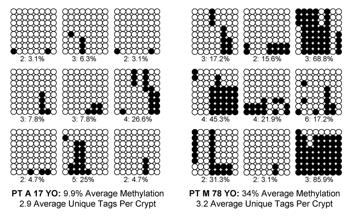 https://static-content.springer.com/image/art%3A10.1186%2F1741-7015-3-10/MediaObjects/12916_2004_Article_52_Fig2_HTML.jpg