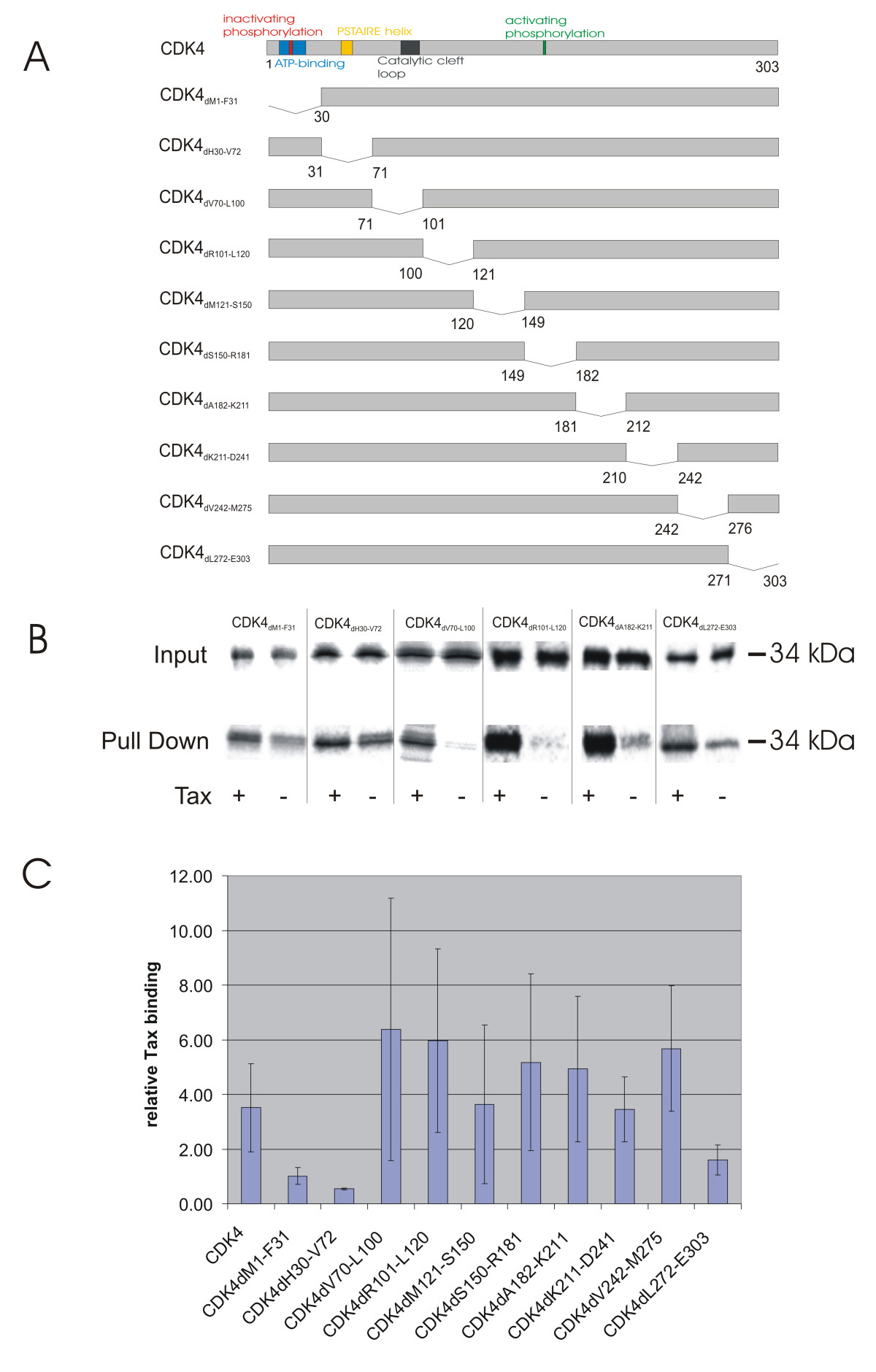 https://static-content.springer.com/image/art%3A10.1186%2F1742-4690-2-54/MediaObjects/12977_2005_Article_100_Fig2_HTML.jpg