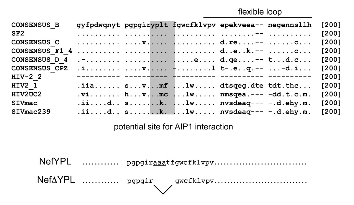 https://static-content.springer.com/image/art%3A10.1186%2F1742-4690-3-33/MediaObjects/12977_2006_Article_475_Fig3_HTML.jpg