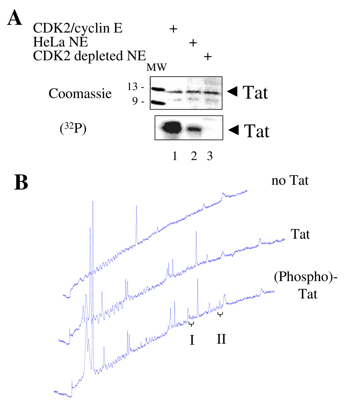 https://static-content.springer.com/image/art%3A10.1186%2F1742-4690-3-78/MediaObjects/12977_2006_Article_520_Fig1_HTML.jpg
