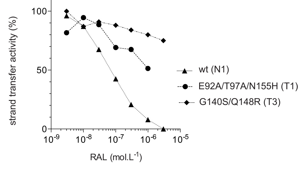 https://static-content.springer.com/image/art%3A10.1186%2F1742-4690-8-68/MediaObjects/12977_2011_Article_2473_Fig4_HTML.jpg