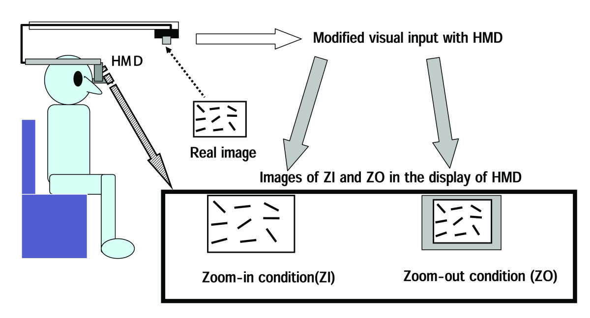 https://static-content.springer.com/image/art%3A10.1186%2F1743-0003-2-31/MediaObjects/12984_2005_Article_45_Fig3_HTML.jpg