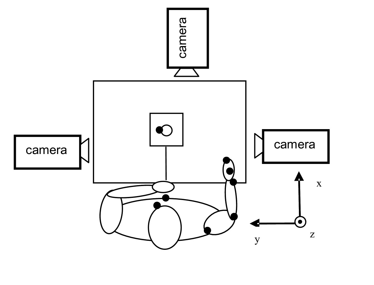 https://static-content.springer.com/image/art%3A10.1186%2F1743-0003-3-18/MediaObjects/12984_2006_Article_65_Fig1_HTML.jpg