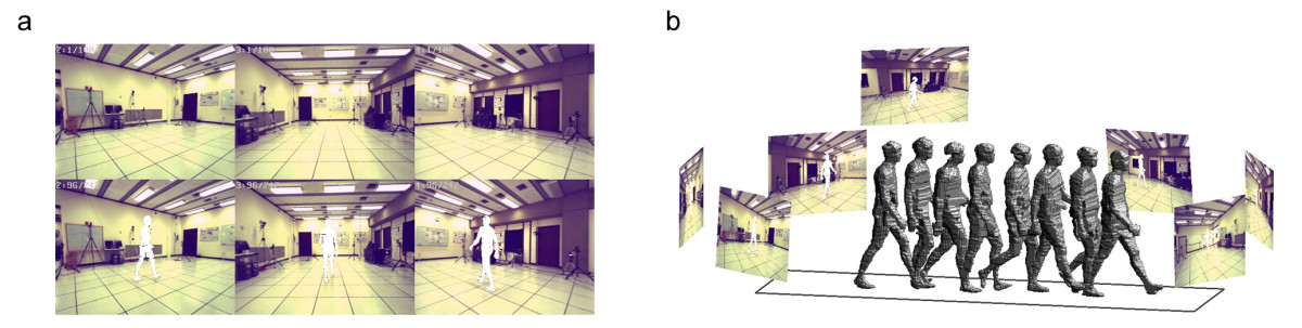 https://static-content.springer.com/image/art%3A10.1186%2F1743-0003-3-6/MediaObjects/12984_2005_Article_53_Fig1_HTML.jpg