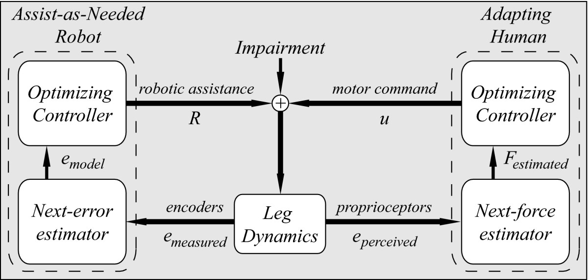 https://static-content.springer.com/image/art%3A10.1186%2F1743-0003-4-8/MediaObjects/12984_2006_Article_84_Fig1_HTML.jpg