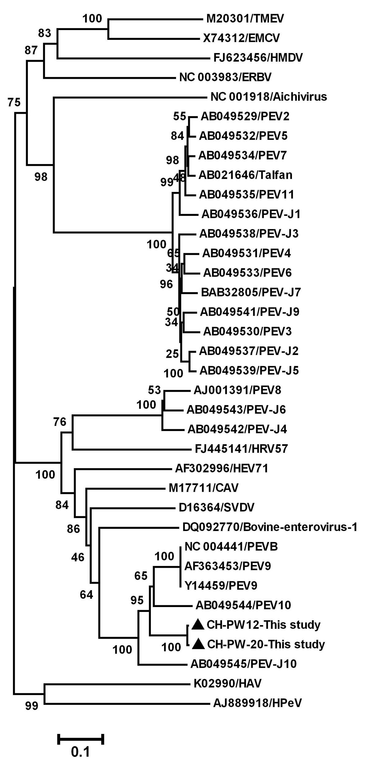 https://static-content.springer.com/image/art%3A10.1186%2F1743-422X-10-99/MediaObjects/12985_2011_Article_2099_Fig2_HTML.jpg
