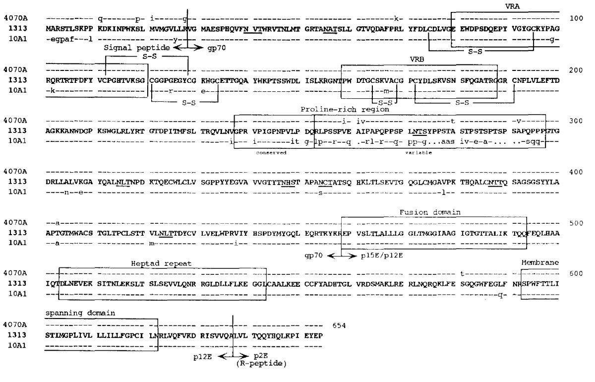 https://static-content.springer.com/image/art%3A10.1186%2F1743-422X-3-101/MediaObjects/12985_2006_Article_208_Fig2_HTML.jpg