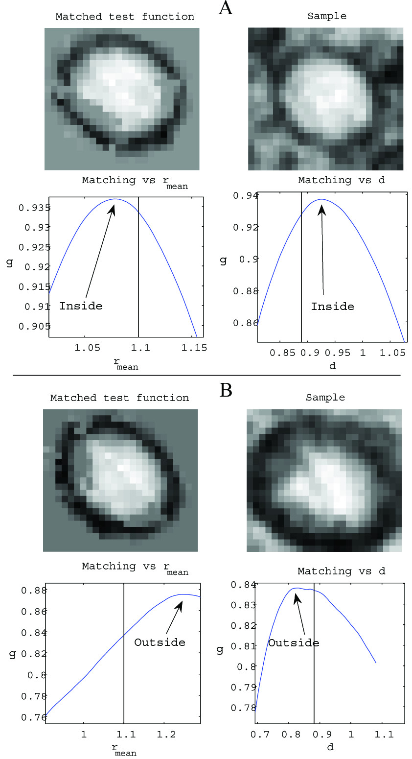 https://static-content.springer.com/image/art%3A10.1186%2F1743-422X-3-57/MediaObjects/12985_2006_Article_164_Fig9_HTML.jpg