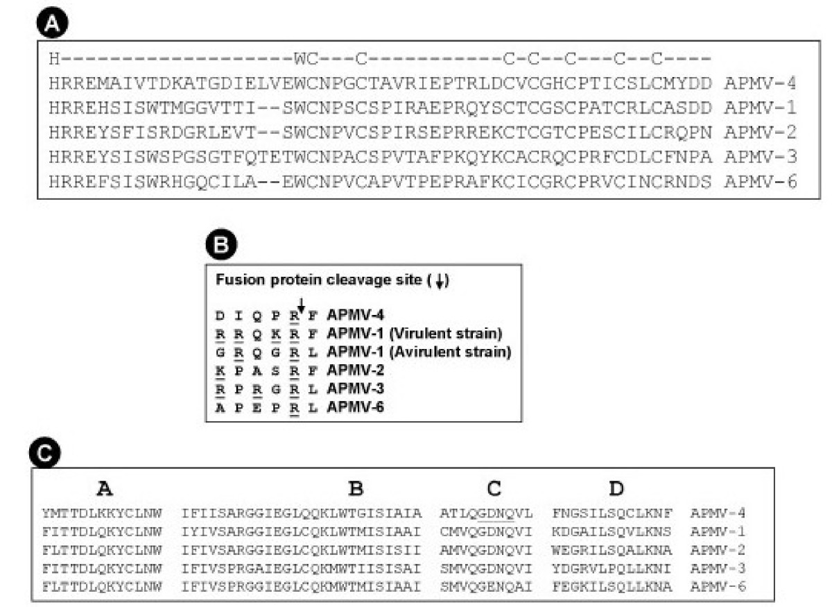 https://static-content.springer.com/image/art%3A10.1186%2F1743-422X-5-124/MediaObjects/12985_2008_Article_473_Fig2_HTML.jpg