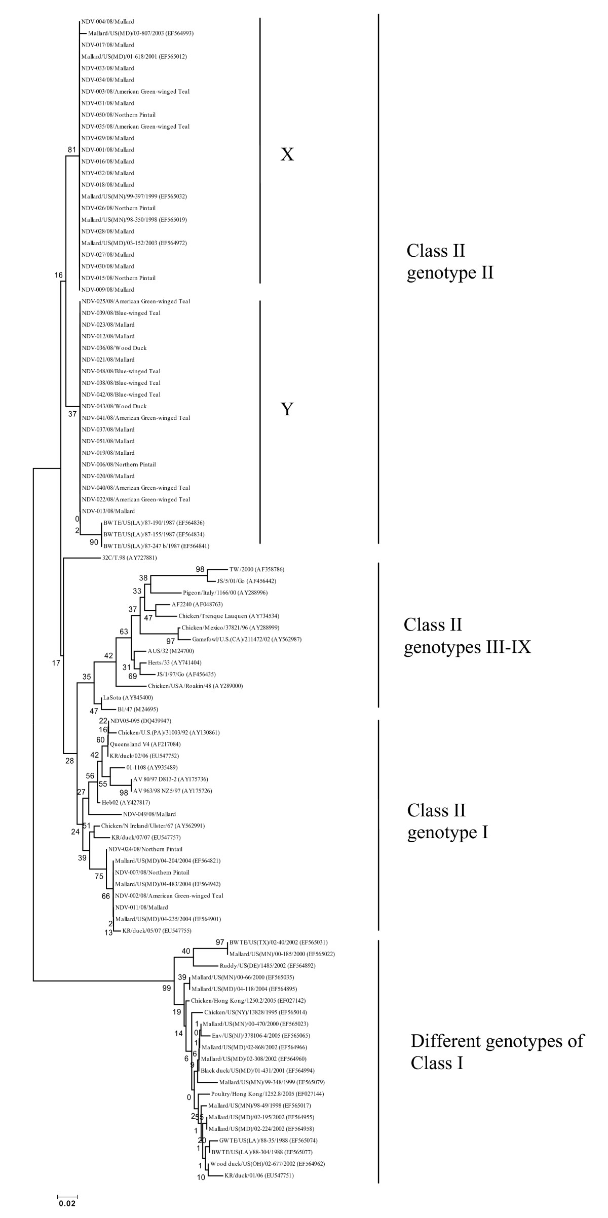 https://static-content.springer.com/image/art%3A10.1186%2F1743-422X-6-191/MediaObjects/12985_2009_Article_705_Fig1_HTML.jpg