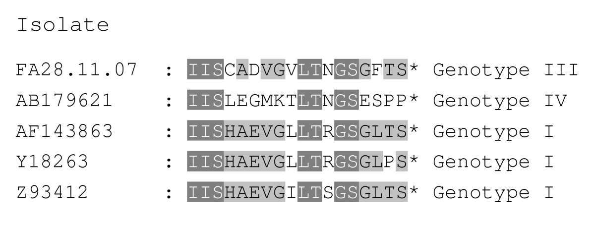 https://static-content.springer.com/image/art%3A10.1186%2F1743-422X-7-19/MediaObjects/12985_2009_Article_764_Fig2_HTML.jpg