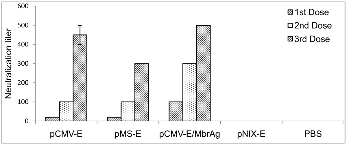 https://static-content.springer.com/image/art%3A10.1186%2F1743-422X-8-382/MediaObjects/12985_2011_Article_1484_Fig5_HTML.jpg