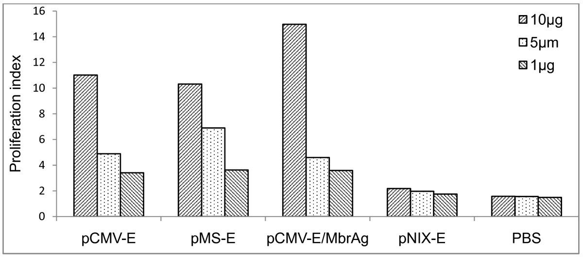 https://static-content.springer.com/image/art%3A10.1186%2F1743-422X-8-382/MediaObjects/12985_2011_Article_1484_Fig7_HTML.jpg