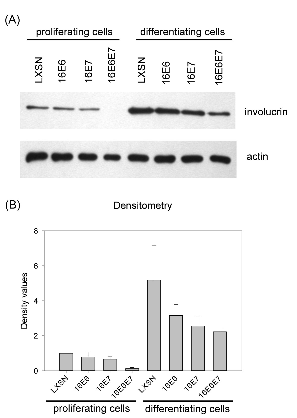 https://static-content.springer.com/image/art%3A10.1186%2F1743-422X-9-36/MediaObjects/12985_2011_Article_1701_Fig3_HTML.jpg