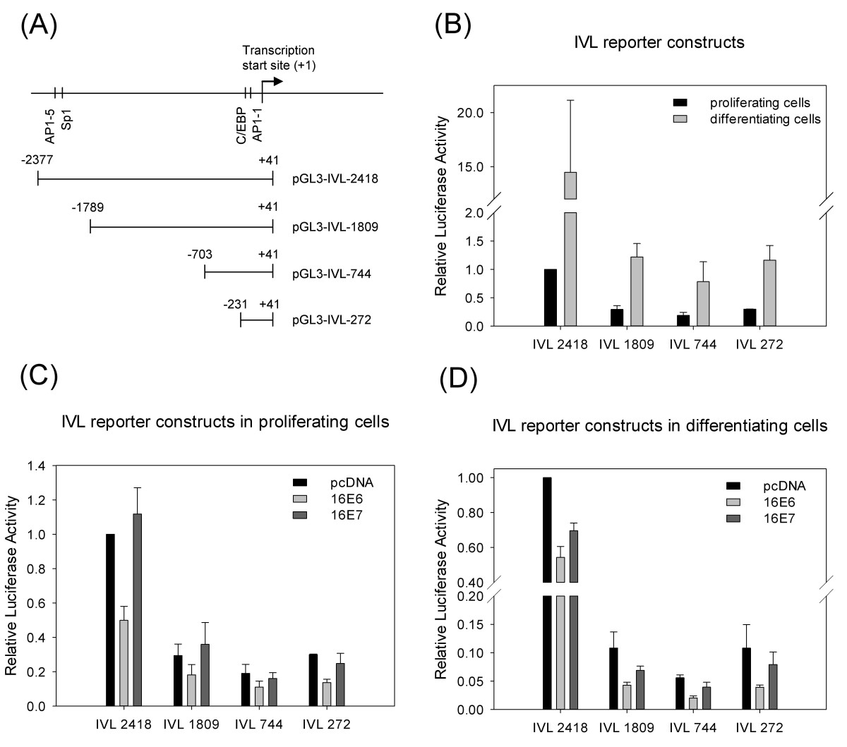 https://static-content.springer.com/image/art%3A10.1186%2F1743-422X-9-36/MediaObjects/12985_2011_Article_1701_Fig5_HTML.jpg