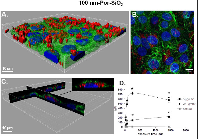 https://static-content.springer.com/image/art%3A10.1186%2F1743-8977-10-2/MediaObjects/12989_2012_Article_227_Fig2_HTML.jpg