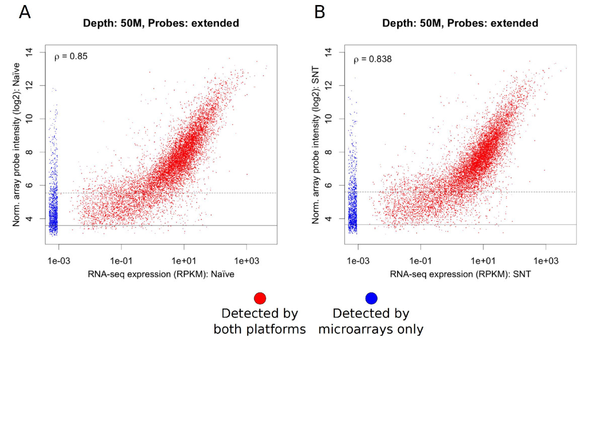 https://static-content.springer.com/image/art%3A10.1186%2F1744-8069-10-7/MediaObjects/12990_2013_Article_717_Fig4_HTML.jpg