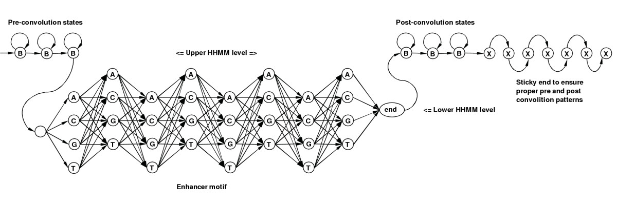 https://static-content.springer.com/image/art%3A10.1186%2F1745-6150-1-10/MediaObjects/13062_2006_Article_10_Fig12_HTML.jpg