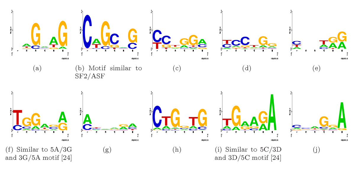 https://static-content.springer.com/image/art%3A10.1186%2F1745-6150-1-10/MediaObjects/13062_2006_Article_10_Fig8_HTML.jpg