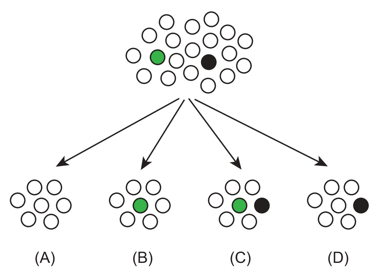 https://static-content.springer.com/image/art%3A10.1186%2F1745-6150-6-44/MediaObjects/13062_2011_Article_291_Fig1_HTML.jpg