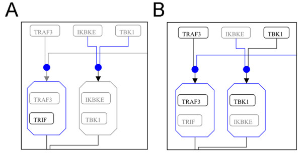 https://static-content.springer.com/image/art%3A10.1186%2F1745-7580-6-10/MediaObjects/12996_2010_Article_48_Fig3_HTML.jpg