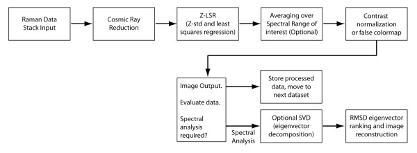 https://static-content.springer.com/image/art%3A10.1186%2F1745-7580-6-11/MediaObjects/12996_2010_Article_49_Fig7_HTML.jpg