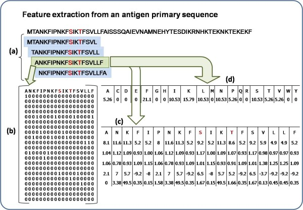 https://static-content.springer.com/image/art%3A10.1186%2F1745-7580-6-6/MediaObjects/12996_2010_Article_44_Fig1_HTML.jpg