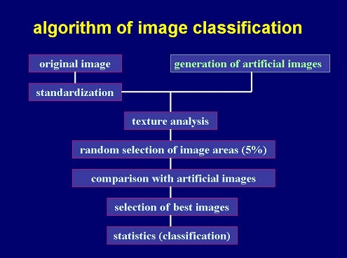 https://static-content.springer.com/image/art%3A10.1186%2F1746-1596-1-10/MediaObjects/13000_2006_Article_10_Fig4_HTML.jpg