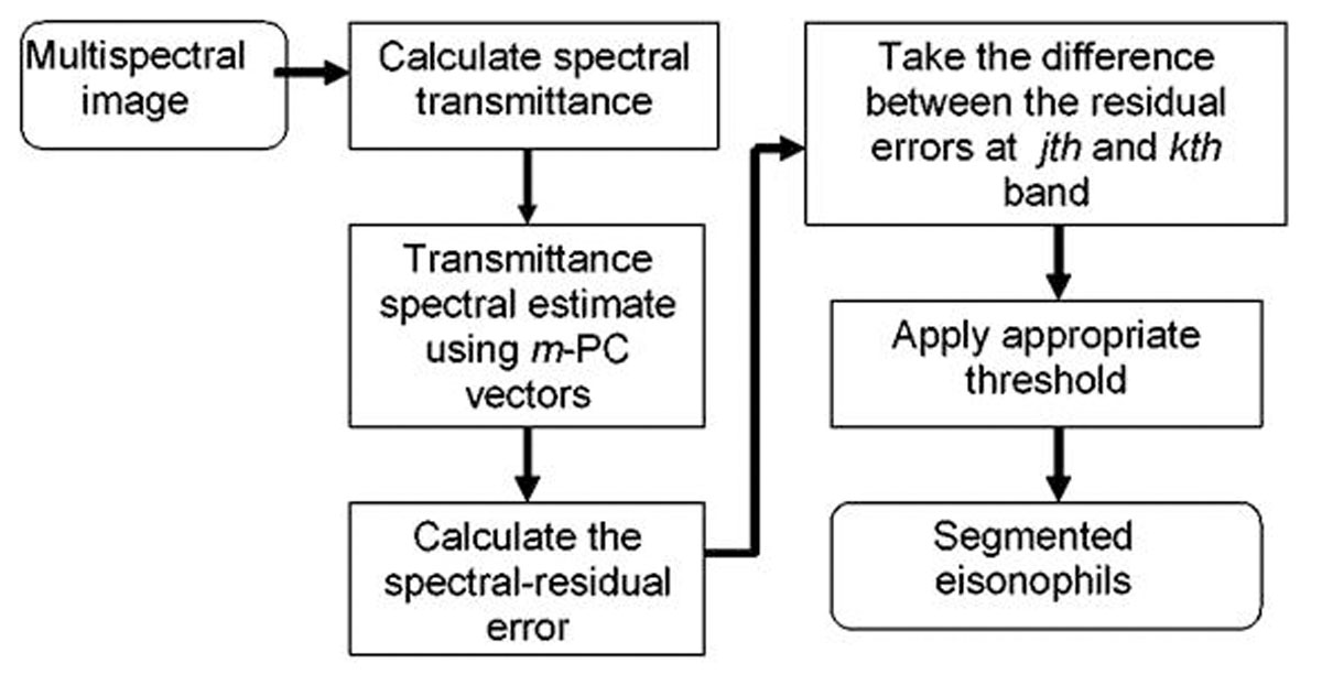 https://static-content.springer.com/image/art%3A10.1186%2F1746-1596-6-S1-S2/MediaObjects/13000_2011_Article_372_Fig2_HTML.jpg