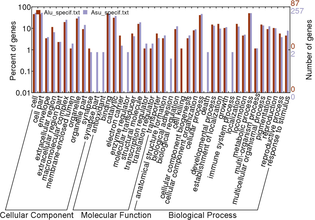 https://static-content.springer.com/image/art%3A10.1186%2F1746-6148-10-99/MediaObjects/12917_2014_Article_904_Fig1_HTML.jpg
