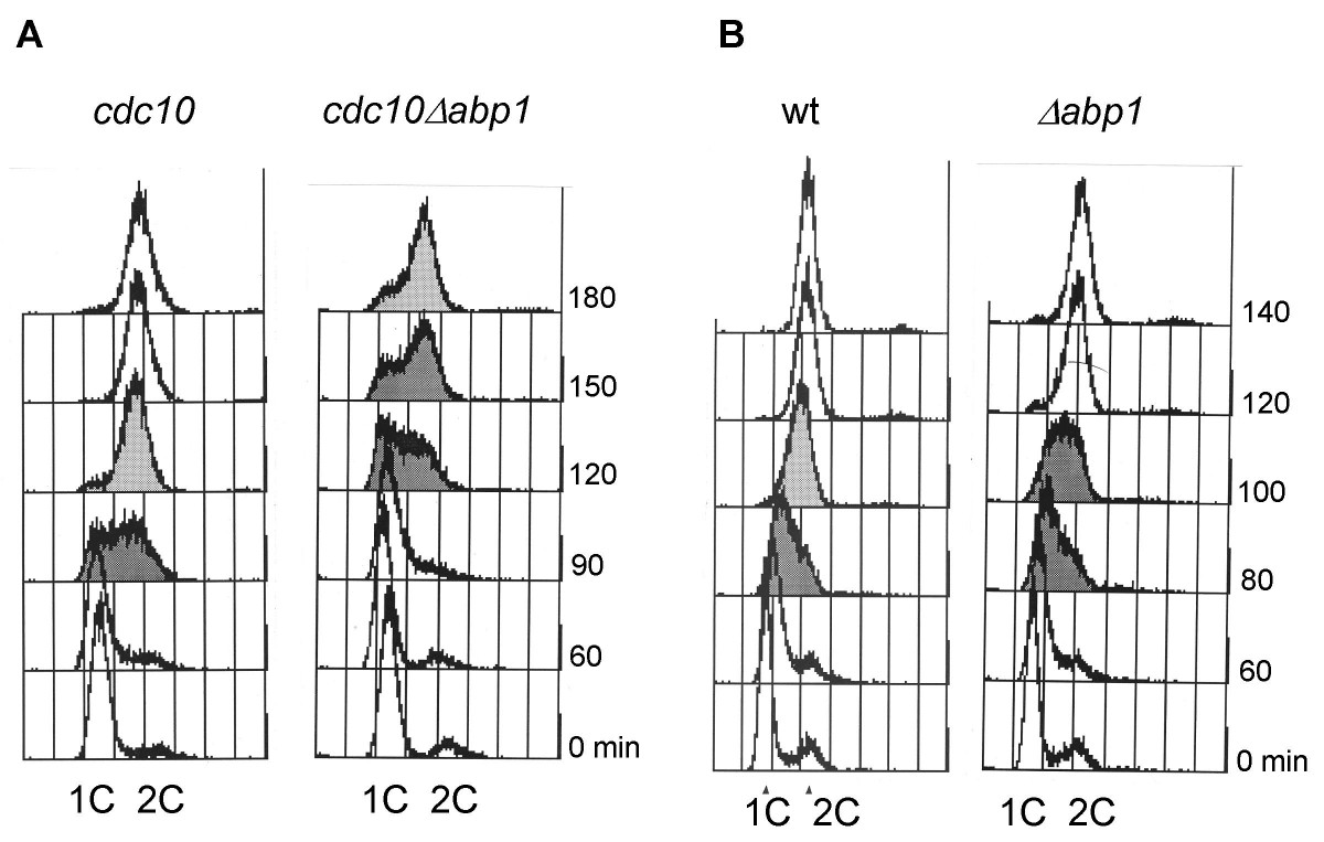 https://static-content.springer.com/image/art%3A10.1186%2F1747-1028-1-27/MediaObjects/13008_2006_Article_27_Fig5_HTML.jpg