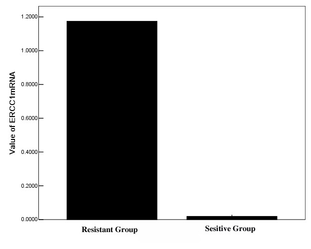 https://static-content.springer.com/image/art%3A10.1186%2F1748-717X-7-221/MediaObjects/13014_2012_Article_685_Fig1_HTML.jpg