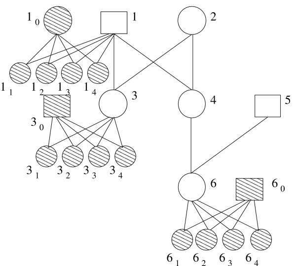 https://static-content.springer.com/image/art%3A10.1186%2F1748-7188-6-10/MediaObjects/13015_2010_Article_122_Fig2_HTML.jpg