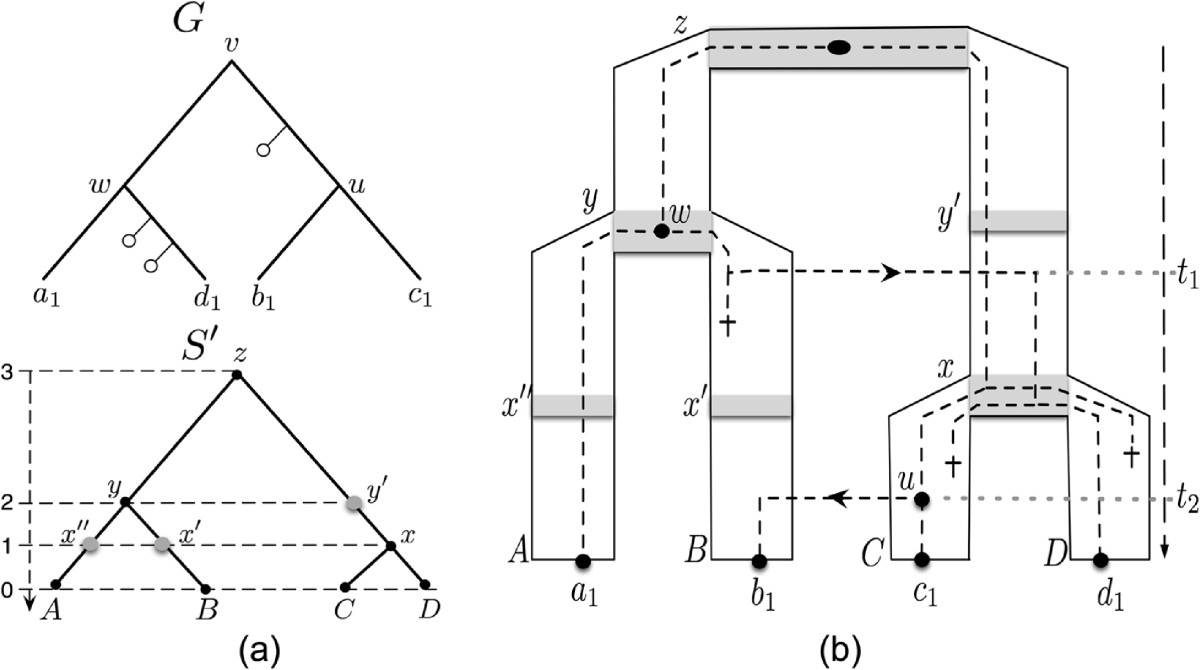 https://static-content.springer.com/image/art%3A10.1186%2F1748-7188-8-12/MediaObjects/13015_2012_Article_196_Fig3_HTML.jpg