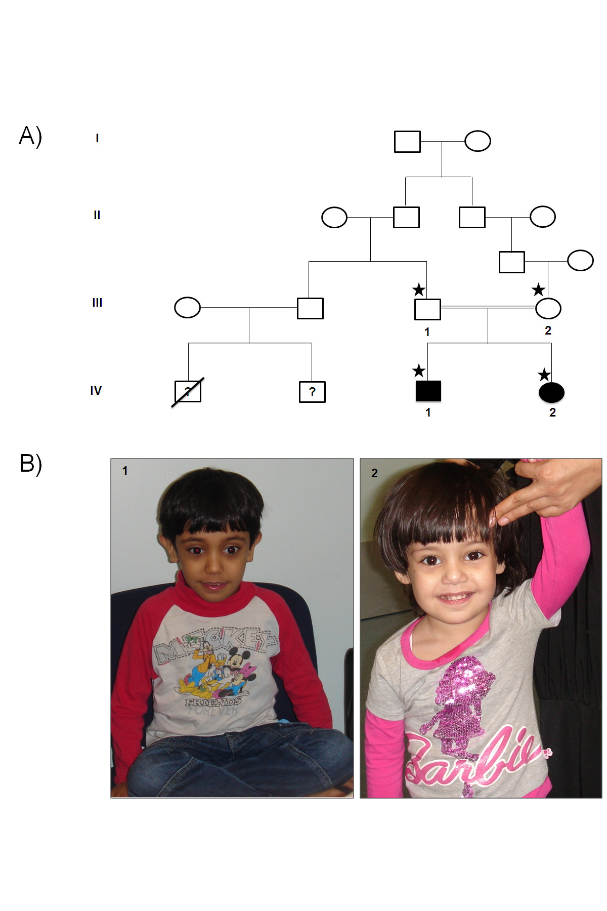 https://static-content.springer.com/image/art%3A10.1186%2F1750-1172-8-87/MediaObjects/13023_2013_Article_635_Fig1_HTML.jpg