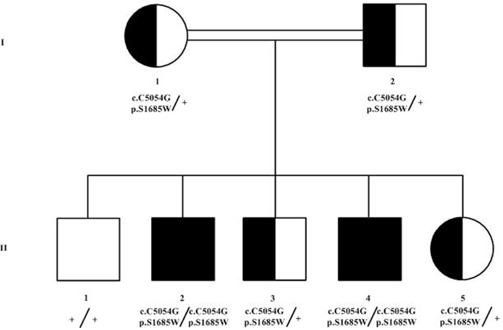 https://static-content.springer.com/image/art%3A10.1186%2F1750-1172-9-80/MediaObjects/13023_2013_Article_768_Fig2_HTML.jpg