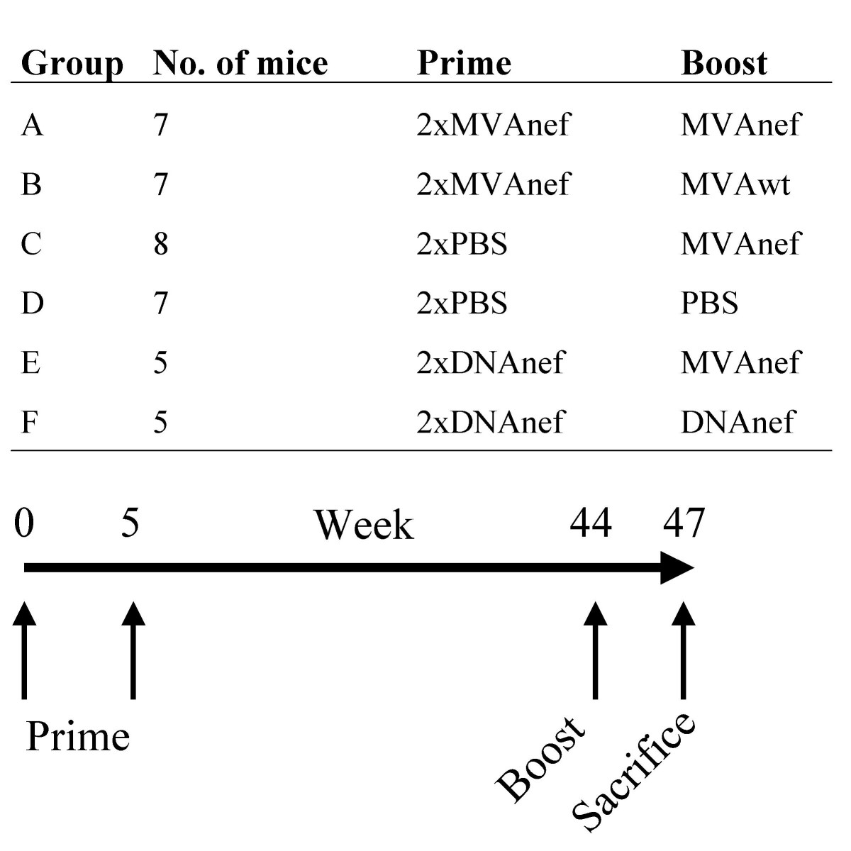 https://static-content.springer.com/image/art%3A10.1186%2F1750-9378-2-14/MediaObjects/13027_2007_Article_23_Fig1_HTML.jpg