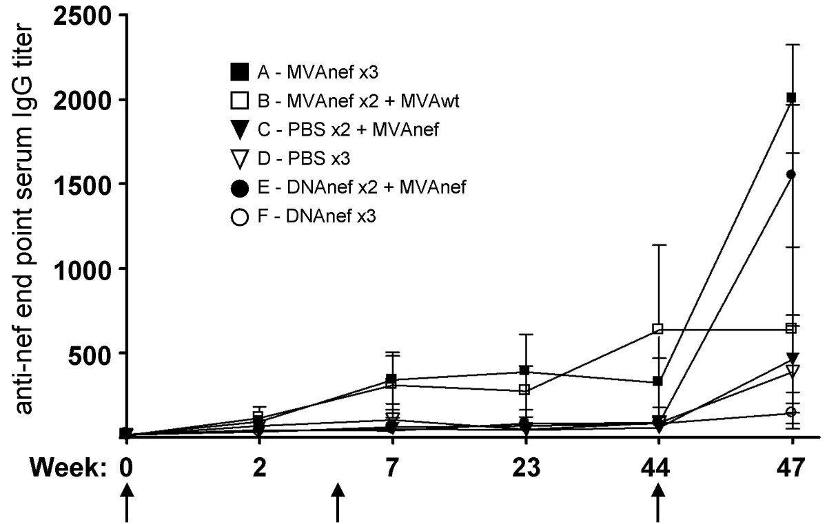 https://static-content.springer.com/image/art%3A10.1186%2F1750-9378-2-14/MediaObjects/13027_2007_Article_23_Fig2_HTML.jpg