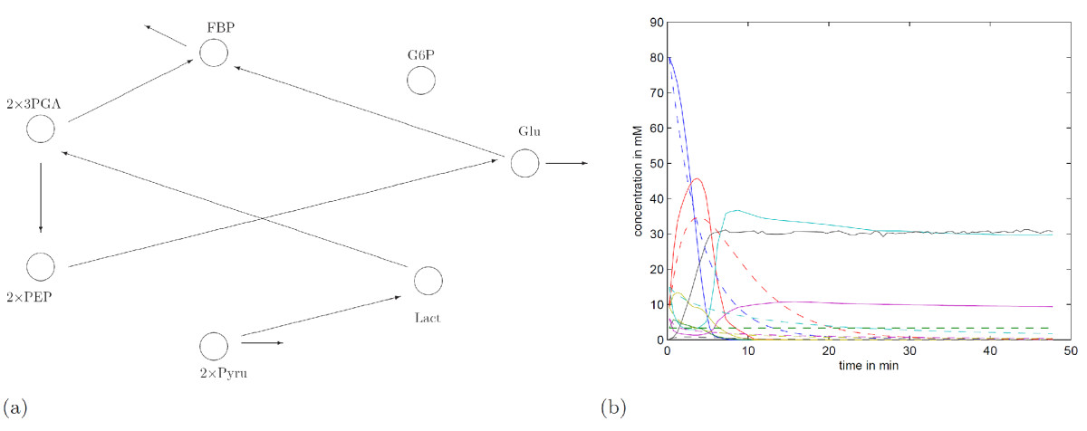 https://static-content.springer.com/image/art%3A10.1186%2F1752-0509-3-25/MediaObjects/12918_2008_Article_293_Fig6_HTML.jpg