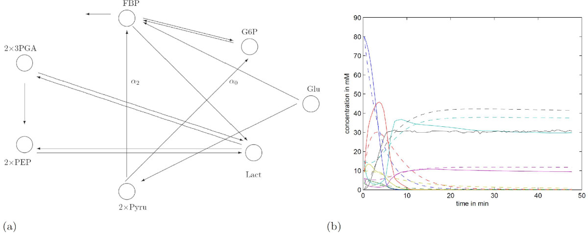 https://static-content.springer.com/image/art%3A10.1186%2F1752-0509-3-25/MediaObjects/12918_2008_Article_293_Fig7_HTML.jpg